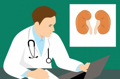 Kidney Cysts - Information on Kidney Cysts