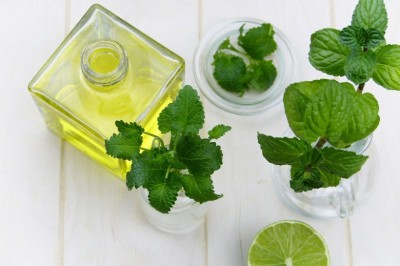 Cold Sore Treatment - Lemon Balm Ice